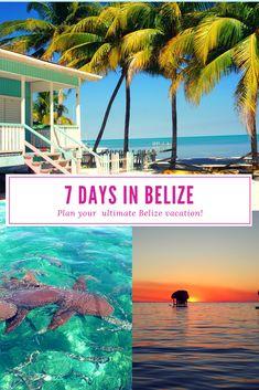 Plan your perfect Belize 7 day itinerary! #belize #travelbelize #sanignacio #cayecaulker