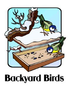 B is for Bird - lapbook with pic