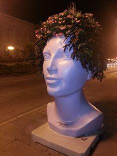 Chicago pot head