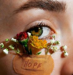 Ideas Eye Photography Color Makeup For 2019 Flower Aesthetic, Aesthetic Art, Aesthetic Pictures, Aesthetic Eyes, Aesthetic Drawing, Aesthetic Letters, Aesthetic Beauty, Aesthetic Makeup, Eye Photography