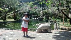 The turtle pond - GWK, Bali