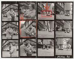 Contact Sheet Print: Chihuahua New York – Elliot Erwitt