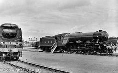 Flying Scotsman, Southern, Train, Strollers