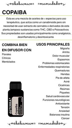 Copaiba essential oil is finally available in Mexico. No place to … - All About Health Copaiba Oil, Copaiba Essential Oil, My Essential Oils, Essential Oil Blends, Doterra Blends, Doterra Oils, Easy Air Doterra, Essential Oil For Circulation, Oil Mix