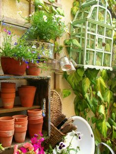 What a great potting area. Everything about this scene for tells of Spring and beautiful things to come...