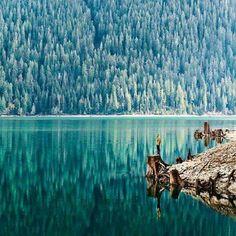 Mount Baker stato di Washington