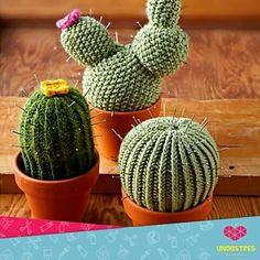 tons of versions of Cactus Crochet that you can make - love all of these! so many cute Crochet Cactus patterns to choose from, TONS of project ideas! Cactus En Crochet, Crochet Cactus Free Pattern, Knitting Patterns Free, Crochet Flowers, Free Knitting, Crochet Patterns, Simply Knitting, Amigurumi Patterns, Crochet Home