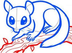 Image result for possum drawing