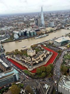 Poppies representing WW1 lives lost for Britain and a Tower