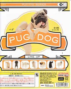 Putitto Series PUG DOG complete set KITAN CLUB Gashapon Japan Fuchico on the cup