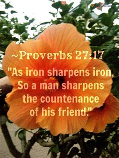"""'As iron sharpens iron, So a man sharpens the countenance of his friend.""' ~PROVERBS 27:17 (NKJV)"