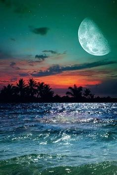 Moon Photos, Moon Pictures, Nature Pictures, Pretty Pictures, Beautiful Moon, Beautiful Beaches, Beautiful World, Beach At Night, Shoot The Moon