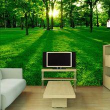 TV Kulisse Gemalt Natürliche Landschaft Wohnzimmer Sofa Schlafzimmer Große  Tapete Wandbild 3d Landschaft Tapete Woods(