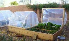Covered garden beds design