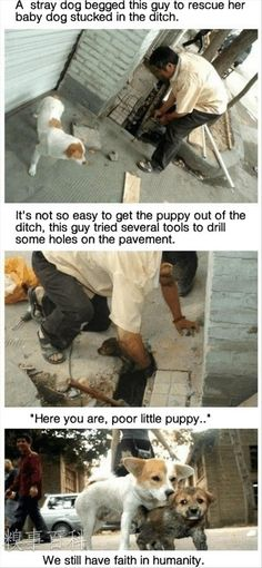 Faith In Humanity Restored – 20 Pics