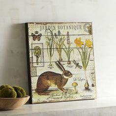 Le Jardin Botanique from Pier 1 and Retail Therapy for Spring, Bunny and Garden Fever | homeiswheretheboatis.net