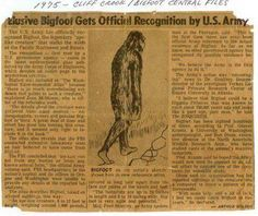 Research and study of Cryptozoology and the Paranormal. News from around the world about bigfoot,ghost,ufos and odd things. Report a sighting. Bigfoot Photos, Pie Grande, Lago Ness, Bigfoot Sasquatch, Bigfoot News, Finding Bigfoot, Bigfoot Sightings, Aliens And Ufos, Ancient Aliens