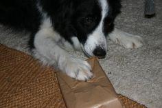 I do like a present to shred