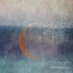 Moon Photograph - The Golden Moon And The Birds by Priska Wettstein