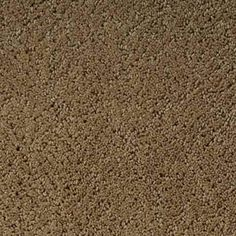 GRACE BRIGHTEN Pattern Active Family™ Carpet - STAINMASTER®