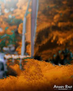 Atharava raut new background - He Amit editing Photo Background Editor, Photo Background Images Hd, Background Images For Editing, Fall Background Wallpaper, Hd Background Download, New Backgrounds, Stylish Girls Photos, Aesthetic Iphone Wallpaper, Birthday Photos