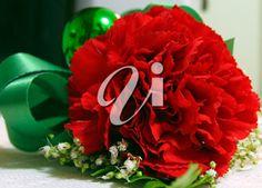 Red carnation Red Carnation, Carnations, Christmas Wreaths, Holiday Decor, Flowers, Home Decor, Decoration Home, Room Decor, Florals
