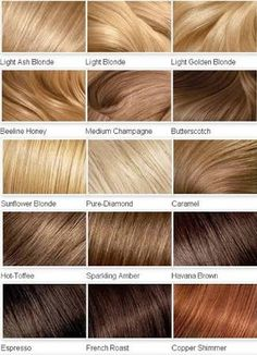 different types of blonde highlights - Google Search