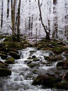 Mountain stream in winter--Smoky Mountains~ www.vrbo.com/558850 or http://www.facebook.com/MyGrandviewCabin or MyGatlinburgCabin.com