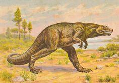 Megalosaurus-postcard-1.jpg (1000×702)