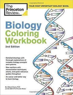 Anatomy and Physiology Coloring Workbook: A Complete Study Guide by ...