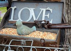 Finding Secret Treasure: Birdseed in a toolbox - so smart and darling!