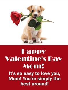 Send Free Adorable Puppy Happy Valentine's Day Card for Mother to Loved Ones on Birthday & Greeting Cards by Davia. It's free, and you also can use your own customized birthday calendar and birthday reminders. Happy Valentines Day Sister, Puppy Valentines, Happy Valentine Day Quotes, Valentines Day Pictures, Happy Valentines Day Card, Valentine Ideas, Valentine's Day Greeting Cards, Birthday Greeting Cards, Birthday Greetings