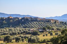 Discover 10 small towns near Grosseto, from the hinterland to the coast. Visit ancient castles and enjoy the amazing views that these villages can offer you. Small Towns, Tuscany, Paris Skyline, Grand Canyon, Dolores Park, Coast, Italy, Travel, Bella