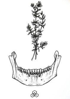 Symbolic Skull Jawbone Occult Death Healing by gothikkka on Etsy, £5.00