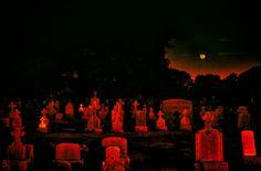 Red Aesthetic, Aesthetic Pictures, Sweet Revenge, Aradia, Dracula, Vampires, Dark Art, Cemetery, Horror