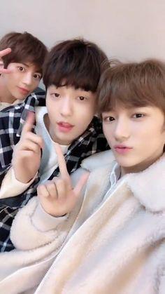 Kai, soobin and beomgyu txt Korean Boy Bands, South Korean Boy Band, Foto Bts, Abrazo Gif, Kai, Kpop Gifs, Fandom, Young Ones, K Idols
