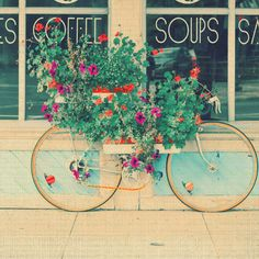Bike+flowers