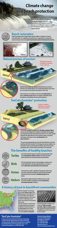 Infographic about he solution to the beach erosion. Beach erosion is a natural process but when hurricanes like Sandy hit the beaches everything (incl