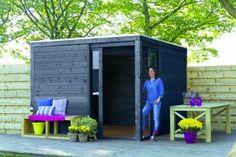Abri de jardin en bois Elite, 8.2 m², ép. 28 mm | Abri de jardin ...