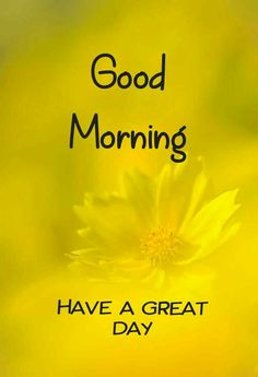 Beautiful good morning images with flowers Good Morning Beautiful Images, Good Morning Images Hd, Good Morning Roses, Good Morning My Love, Goodmorning Quotes For Her, Good Morning Wishes Friends, Good Morning Massage, Blessed Sunday, Morning Messages