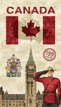 Canadian Sesquicentennial - but please remember, the colonization of Canada is 150 years old; Canada is far older than that. Canadian Things, I Am Canadian, Canadian History, Canadian Culture, Canada 150, Toronto Canada, Canadian Quilts, Quilts Canada, Canada Day Crafts