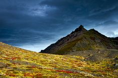 Photograph by Stuart Litoff.  #Dark #clouds over #colorful #ground cover in #Iceland