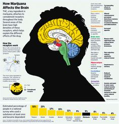 Marijuana and your Brain - This is a very honest and informative infographic on both the benefits AND side effects of medical marijuana.