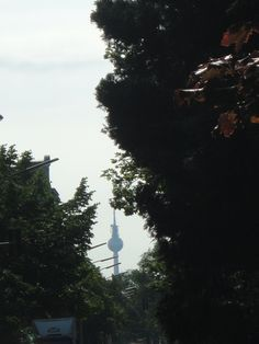 Yes, you can see the TV Tower from Alt-Moabit too!