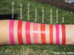 mac lipstick - pink pigeon, scarlet ibis, party parrot, flamingo, morange, entertain me, embrace me, redd