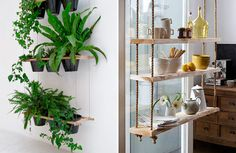 If you don't have a big garden or if you have it, but you want to create a new one inside your home… today you'll find some simple and creative ideas to do it yourself. Some beautiful solutions to hanging houseplants and make a charming and warm home decor! via via Criação Michael McDowell via Peaches + Keen Store via via via via via via