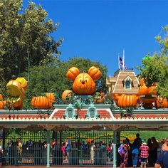I love the main gate decorations each season #pumpkin #Halloween #halloweentime #disney #disneyland #californiaadventure #california #anaheim #princess #mickeymouse @disneyland @disneyscaliforniaadventure #mainstreet #dlr #disneylandresort #mickey #jackolantern #2016 #trickortreat #photoop #photopass #townsquare