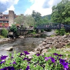 1000 Images About Downtown Gatlinburg On Pinterest