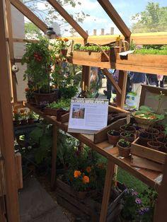 Greenhouse of dreams!