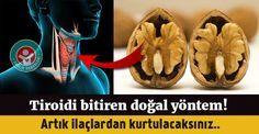Ceviz kürü ile tiroid probleminize elveda diyin...#tiroid #thyroid #news #health #healty #ceviz #sağlık
